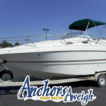 Cover Photo - Larson 254 Cabrio Anchors Aweigh