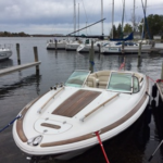 2008 Chris Craft Corsair 25 - Anchors Aweigh Boat Sales Used Boats For Sale In Minnesota (3)
